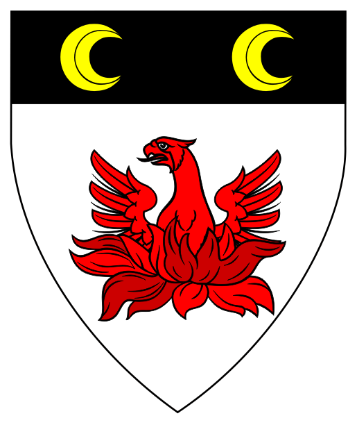 Arms Image
